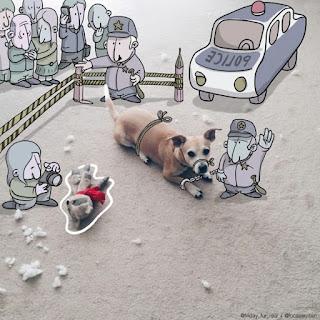 Foto divertida de perro con peluche