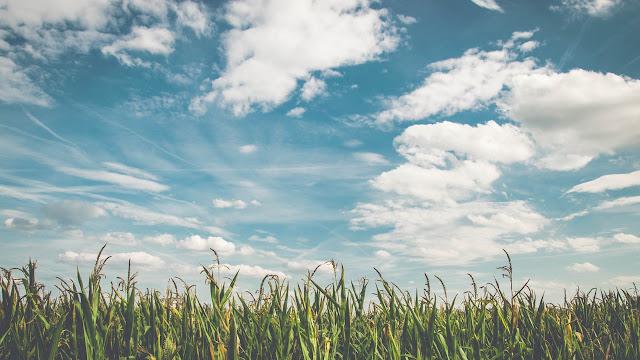 هل تعلم لماذا لون السماء أزرق ؟