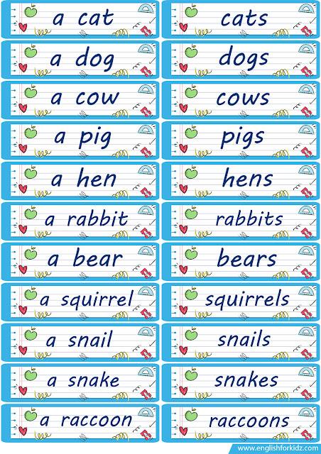 plural noun flashcards