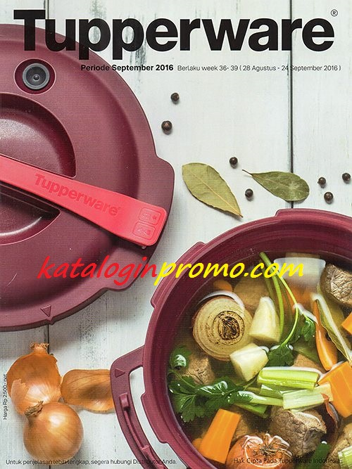 Katalog Tupperware Activity September 2016