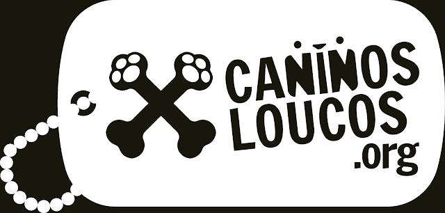 Caninos Loucos - Single Board Computer brasileira