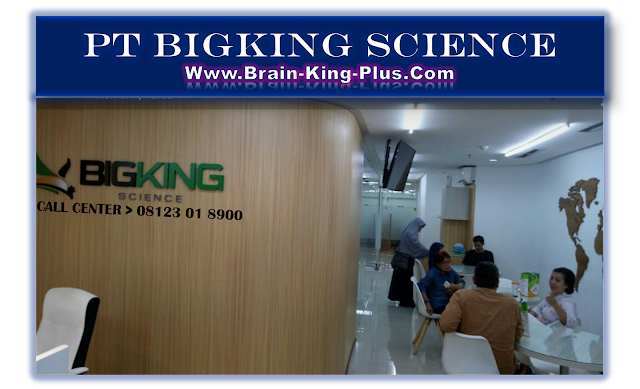 Brainking Plus asli