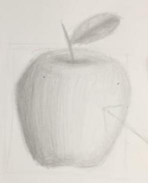 Karakalem Elma çizimi Nasıl Yapılır Karakalem çizimleri