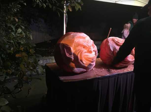 Pumpkin carving during Chicago Botanic Garden's Night of 1000 Jack o Lanterns