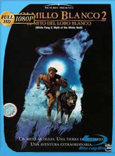 Colmillo Blanco 2 1994HD [1080p] Latino [GoogleDrive] SilvestreHD