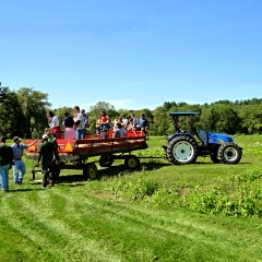 Verrill Farm Day Hayrides Concord MA New England Fall Events