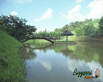 Construção do lago com a ilha no meio com os muros de pedra, o quiosque de piaçava e a ponte de madeira. Construção de lagos em Mairiporã-SP.