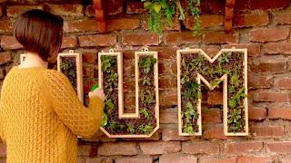 Maceteros en forma de letras para interiores