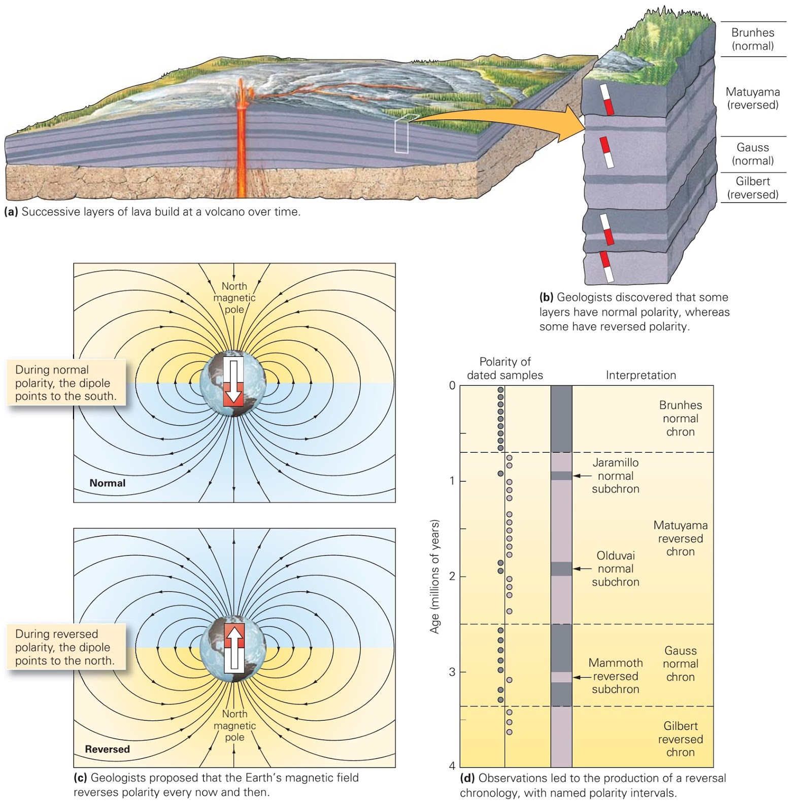 Evidence For Sea Floor Spreading Learning Geology
