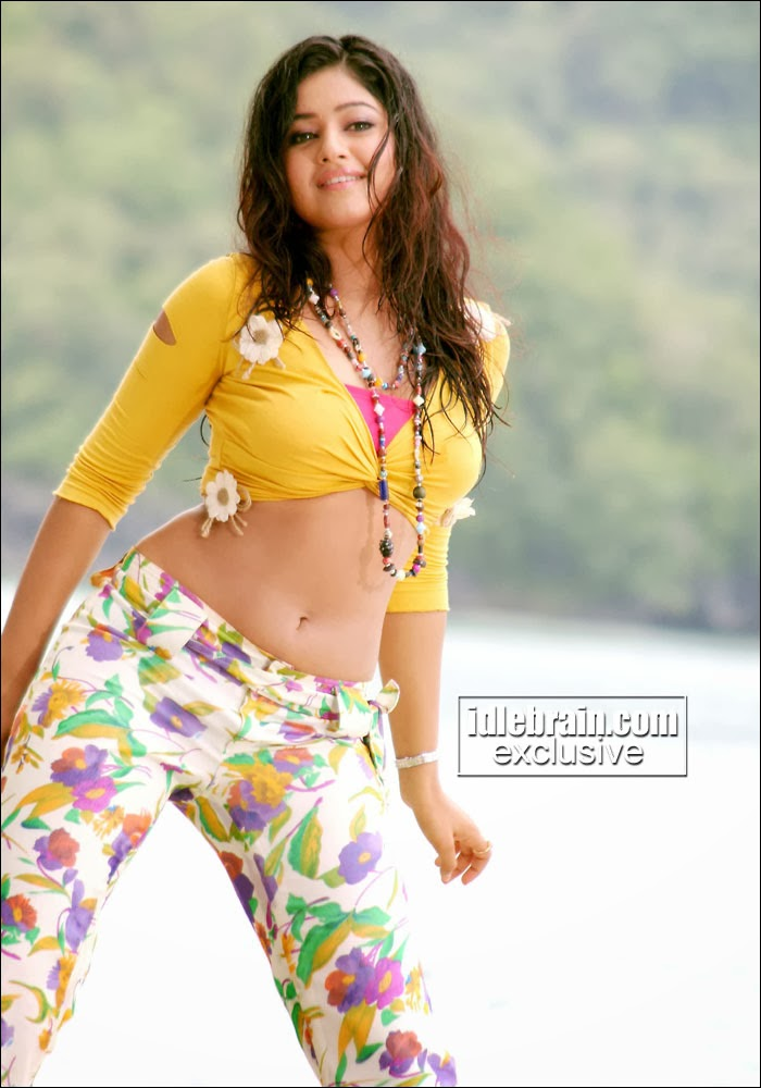 South Actress Hot Pics Poonam Bajwa Navel Exposing Telugu -4540
