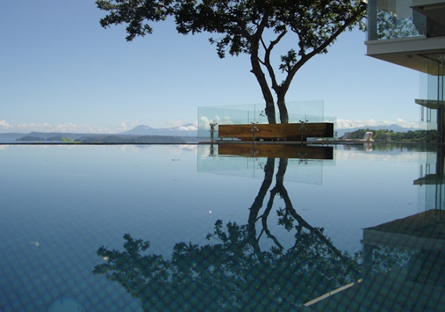 Photo of a tree grown into the terrace as seen from the pool