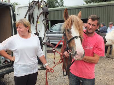 Are you going to Brigg Horse Fair 2016 - to be held on Friday, August 5th? Picture six on Nigel Fisher's Brigg Blog