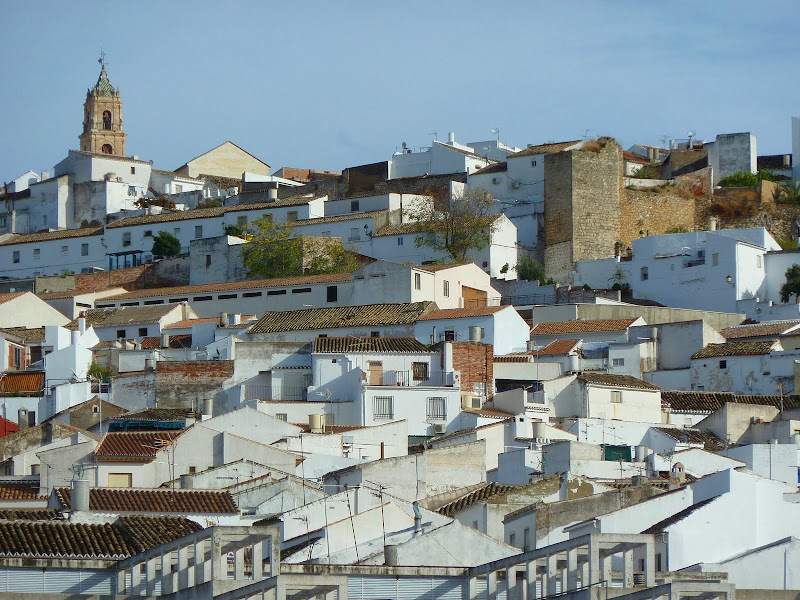 Baena, in Inland Andalucia is an olive growing city