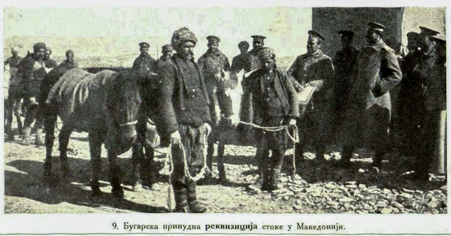 Bulgarian cattle requisition in Macedonia