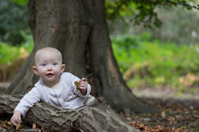 A baby sits on the floor in a forest holding leaves with a fallen branch in front of her and a tree behind