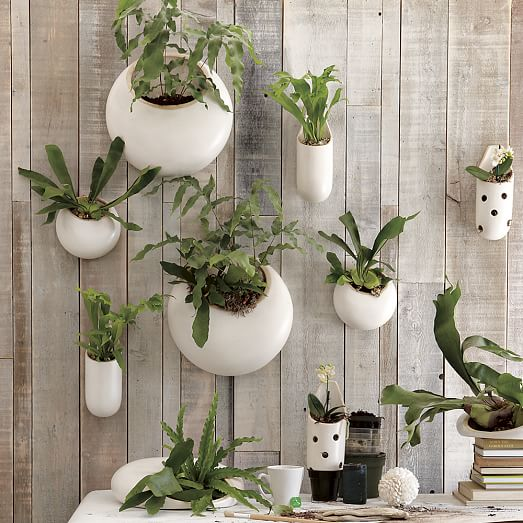 Wall Hanging Planter wall mounted hanging planters garden 1001 : why people love it