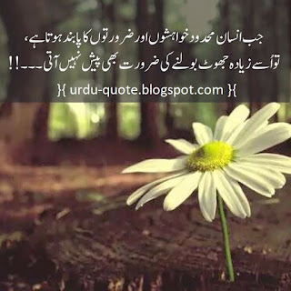 Urdu Lovely Quotes 46