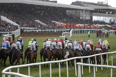Irish Racecourses: Punchestown