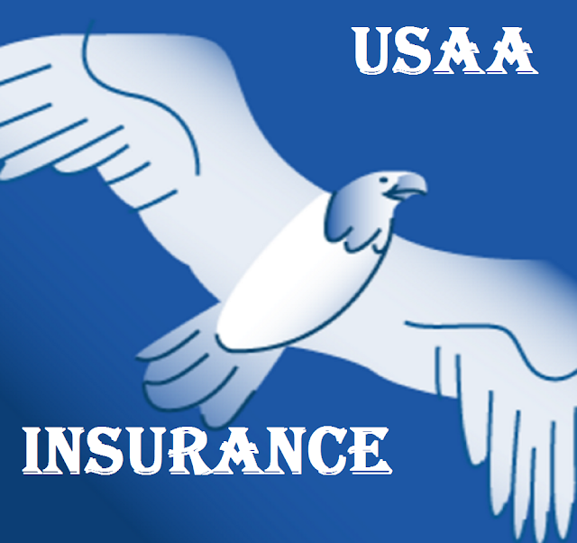 Insurance Logo New USAA