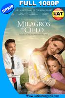 Los Milagros del Cielo (2016) Latino Full HD1080P - 2016