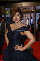 Payal Ghosh aka Harika in Dark Blue Deep Neck Sleeveless Gown at 64th Jio Filmfare Awards South 2017 ~  Exclusive 078.JPG