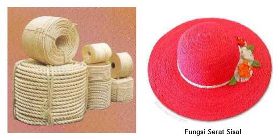 Sifat dan Fungsi Bahan Tekstil