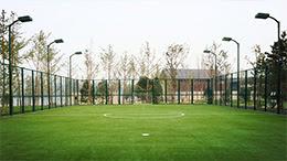 Apec Football