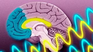 como despertar el poder de la mente y las ondas cerebrales