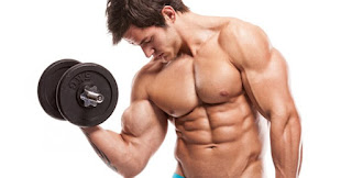 The Difference Between Body Building and Strength Training