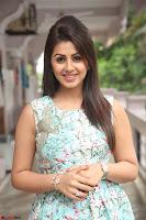 Nikki Galrani at Prema leela pelli gola trailer Launch ~  Exclusive 039.JPG