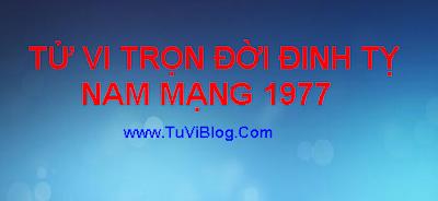 TU VI DINH TY 1977