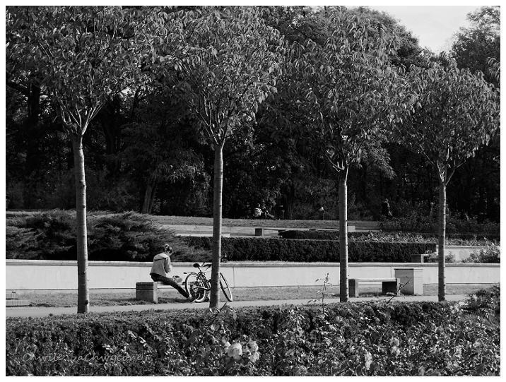 Park Cytadela w Poznaniu