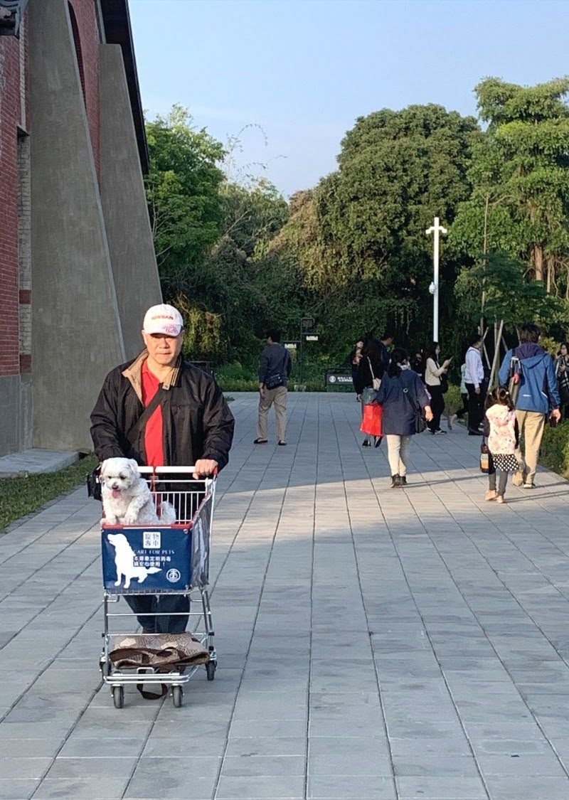 毛小孩爸媽看過來|台南水道博物館備寵物專用推車|成友善寵物新景點