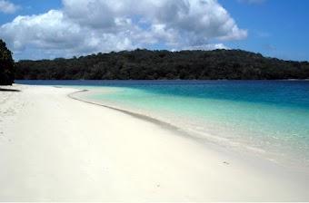 Keindahan di Pulau Peucang Ujung Kulon