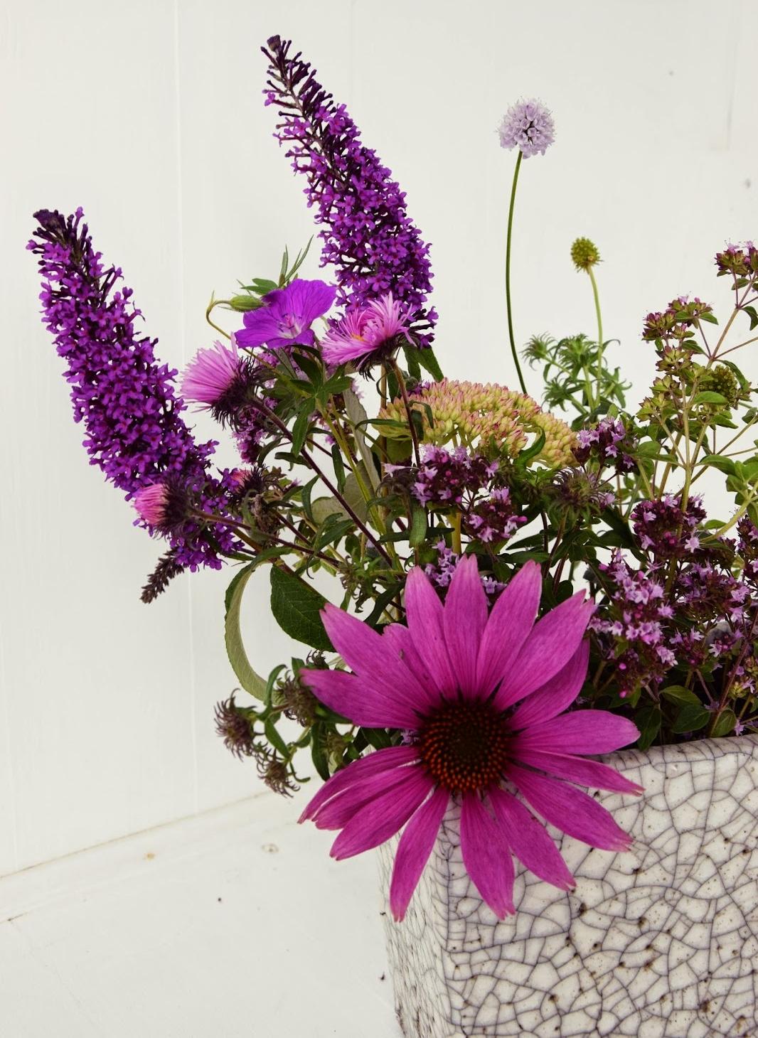 Mit Flieder kreativ gestalten, dekorieren und arrangieren. Tipps und Tricks. Flieder für den Garten