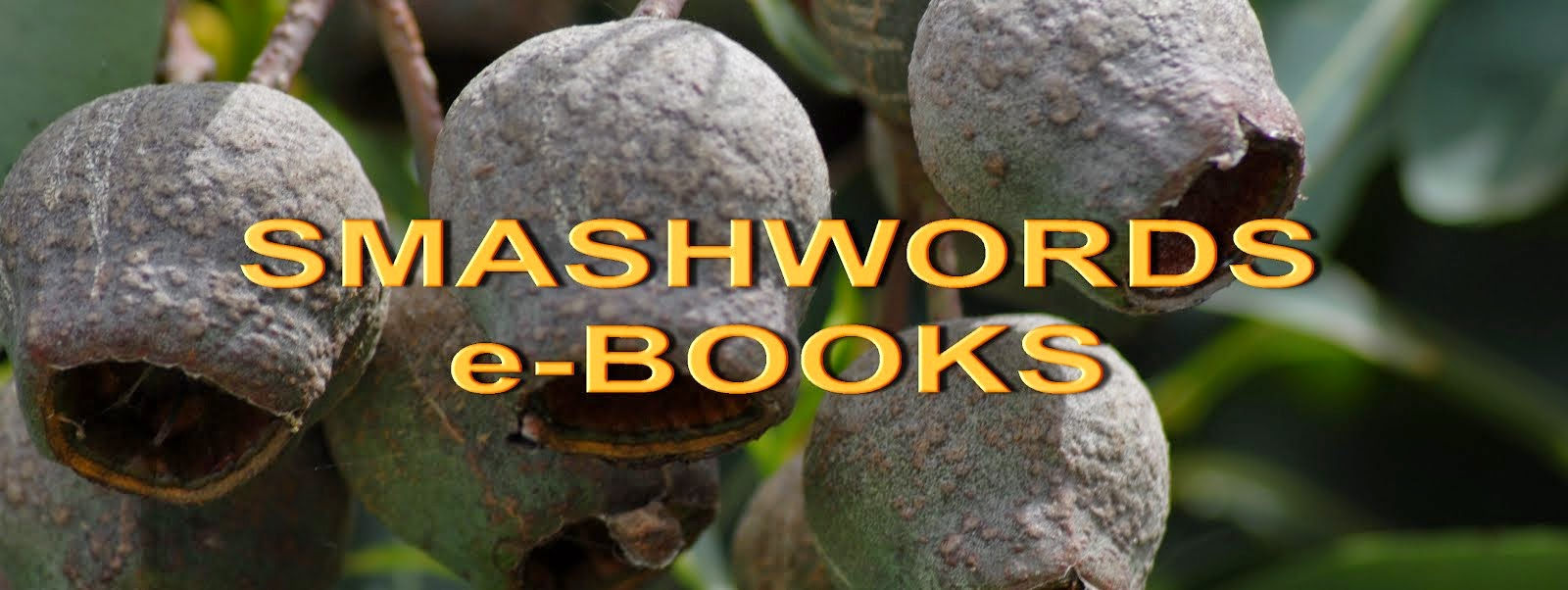SMASHWORDS e-BOOKS