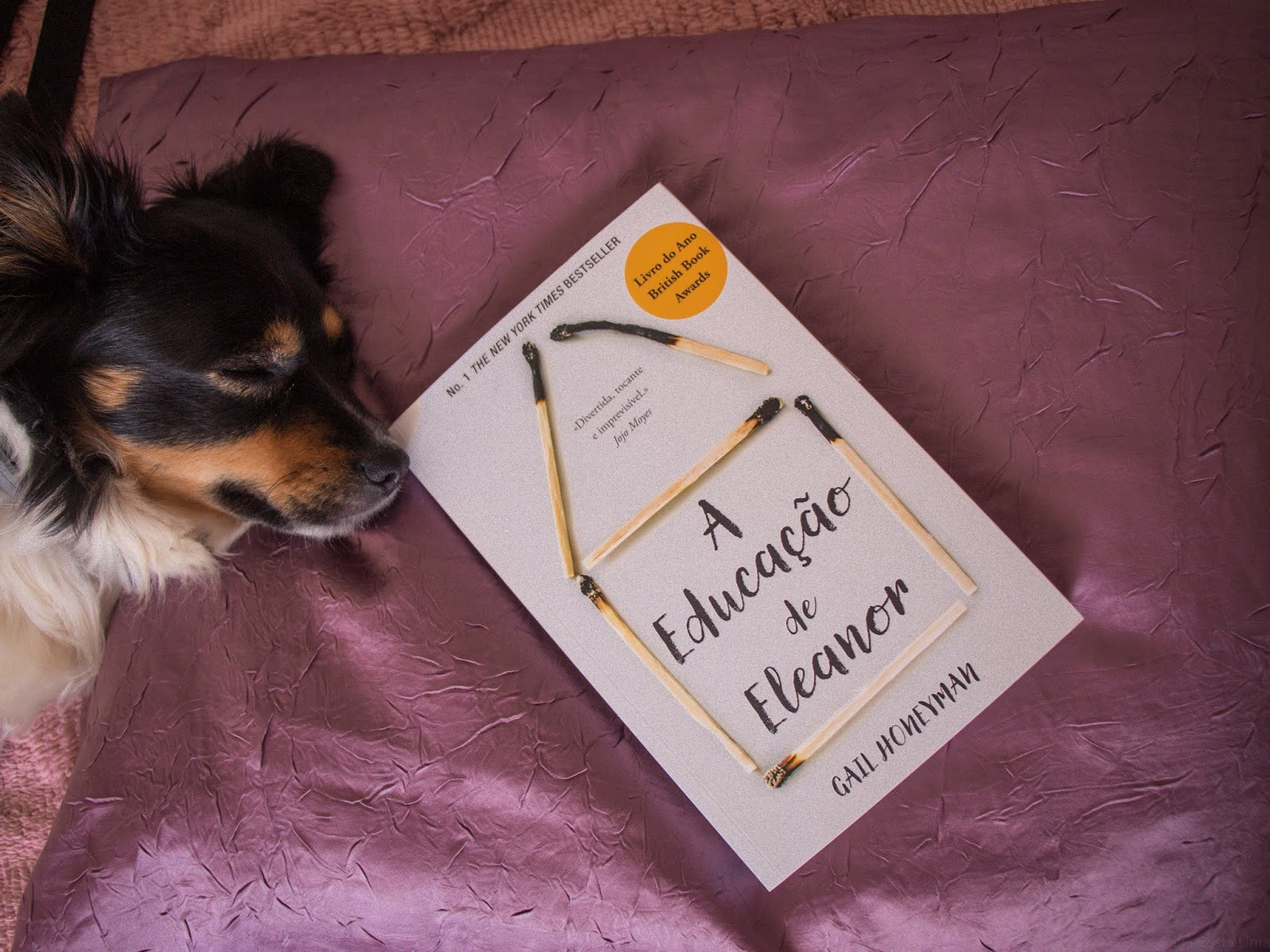 """Eleanor Oliphant is Completely Fine"" - Gail Honeyman"