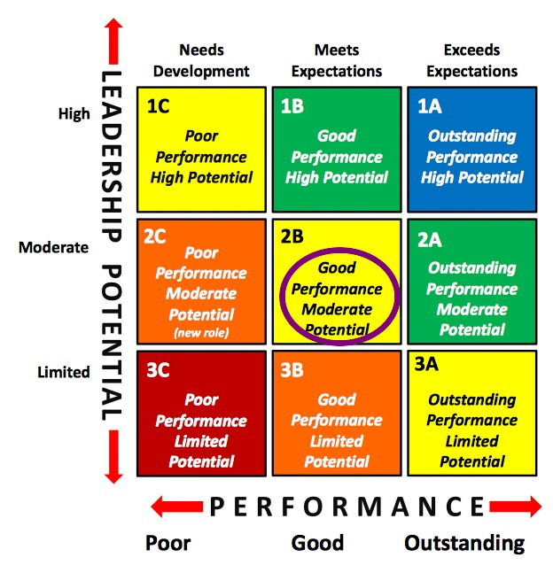 Talent Management 9 Box Grid Good Performance Moderate Potential