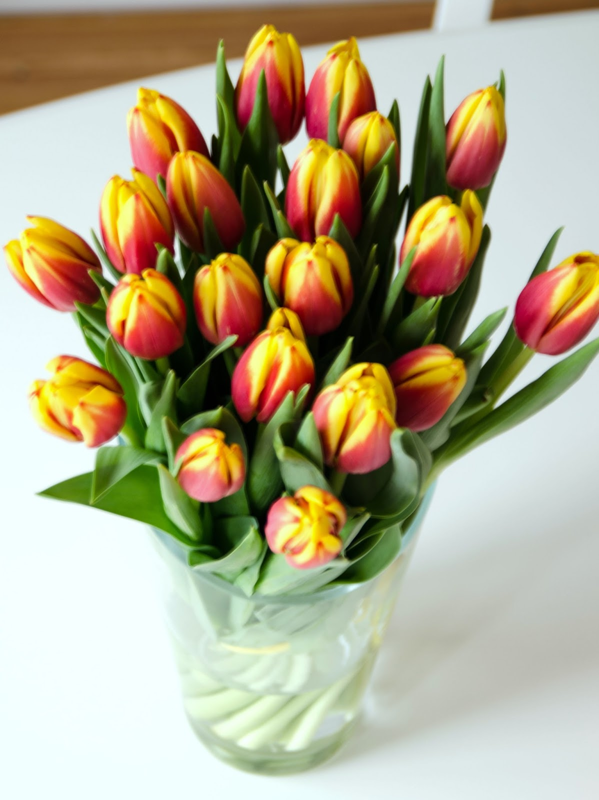 orange tulips yellow tips