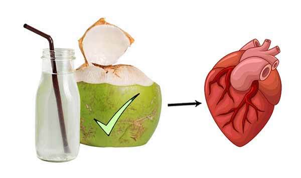 Awesome Benefits Of Drinking Coconut Water Every Day - I Paleo Diet