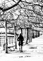 http://fineartfotografie.blogspot.de/2016/10/under-trees-berlin.html