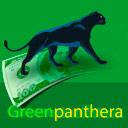 Green Panthera - Estudios de mercado pagados