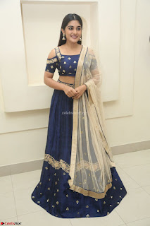 Niveda Thomas in Lovely Blue Cold Shoulder Ghagra Choli Transparent Chunni ~  Exclusive Celebrities Galleries 077