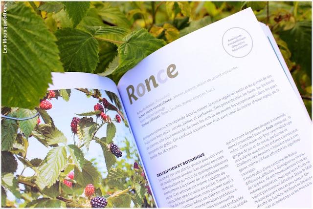 Livre 250 remèdes naturels à faire soi-même - édition Terre Vivante, Blog beauté Les Mousquetettes©