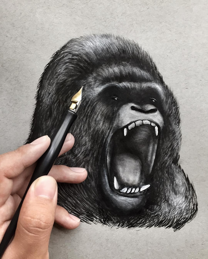 12-Silverback-Gorilla-Jonathan-Martinez-Realistic-Pencil-Animal-Drawings-www-designstack-co