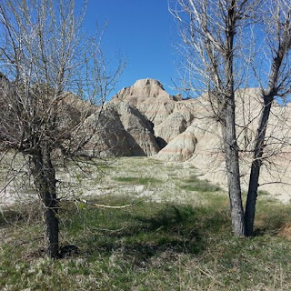 life-badlands-beauty-blare