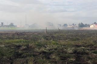 http://vnoticia.com.br/noticia/2904-queimadas-voltam-a-importunar-a-vida-dos-moradores-do-centro-de-sfi
