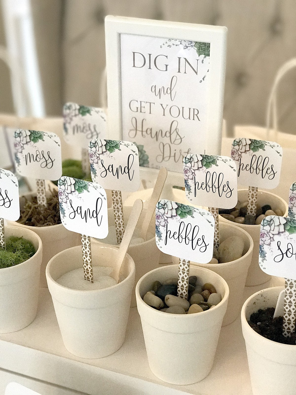 A Lovely Design: Terrarium Making Party