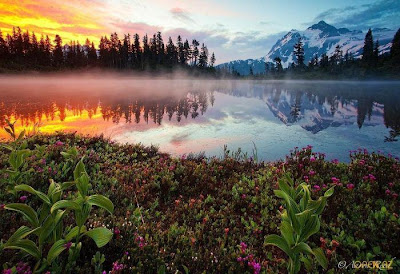 Keindahan Tasik Dan Alam Semulajadi
