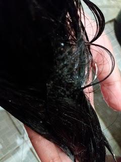 Rambut berhijab